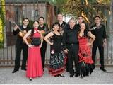 Gipsy Flamenco : danseuses et musiciens de flamenco