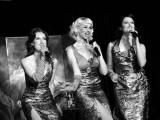Soirée Vintage Swing années 50 pour une soirée clients (56)