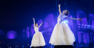 Danseuses boites à musique en soirée au Grand Palais (75)