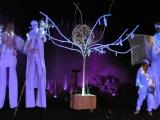 Spectacle d'échassiers lumineux pour les festivités de Noël (67)