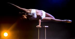 Numéro de contorsion extraordinaire en soirée évènementielle (75)